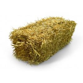 Paille de blé